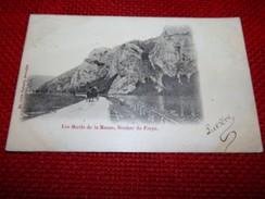 FREYR -  HASTIERE  -  Les Bords De La Meuse - Rocher De Freyr - Hastière