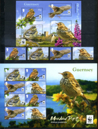 Guernsey 2017 WWF, Fauna, Birds, Meadow Pipit - W.W.F.