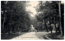 78 - VERNEUIL Sur SEINE -- Route De Meulan Dans Le Bois - Verneuil Sur Seine