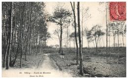 78 - VELISY -- Forêt De Meudon  - Dans Les Bois - Velizy