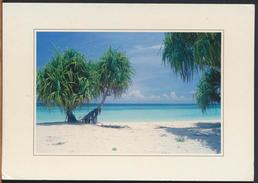 °°° 1189 - TANZANIA - BEACH AT NUNGWI - With Stamps °°° - Tanzania