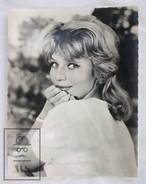 1960's Vintage Real Photo Cinema Film Actress: Annette Vadim By Studio Vauclair, Editions P.I. Paris. 18 X 14 Cm - Fotos