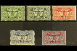"POSTAGE DUES 1925 Overprint Set, Additionally Ovptd £Specimen"", SG D1s/5s, Very Fine Mint. (5 Stamps) For..."