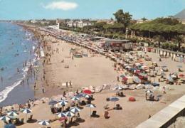 LATINA - Terracina - Spiaggia - Animata - Latina