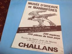 Musée D Oiseaux Et Mammifères Challans Route De St Jean De Monts Aigles Publicité - Challans