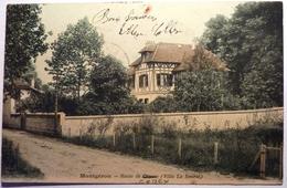 ROUTE DE CONCY ( VILLA LA SOURCE) - MONTGERON - Montgeron