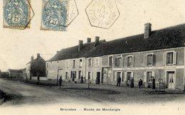 77 BRANSLES Route De Montargis,animée Hotel Du Lion D'Or - Autres Communes
