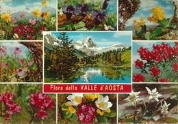 Valle D'Aosta, Scorcio Panoramico Del Cervino E Flora Della Valle - Aosta