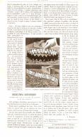 RECREATIONS SCIENTIFIQUES ( Expériences D'équilibre éxécutées Avec Des Dominos )    1889 - Sciences & Technique
