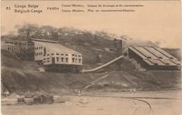 Congo Belge Panda Union Minière Usines De Broyage Et De Concentrations (entier Postal) - Congo Belga - Otros