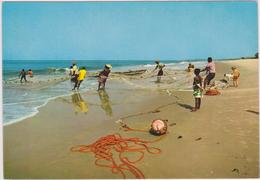 Sierra Léone, Afrique De L´ouest,entre Le Libéria Et La Guinée,PECHE - Sierra Leone