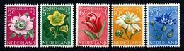 Nederland 1952: Zomerzegels ** MNH - Periodo 1949 - 1980 (Giuliana)