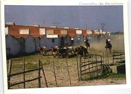 ALCOCHETE - HERDADE DA BARROCA D'ALVA - CAMPINOS - CORRIDA TOURADA - PORTUGAL (2 SCANS)