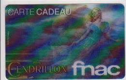GIFT CARD - FRANCE - FNAC 58 - CENDRILLON - CINEMA - MOVIE - Cartes Cadeaux