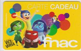 GIFT CARD - FRANCE - FNAC 60 - VICE VERSA - CINEMA - MOVIE - Cartes Cadeaux