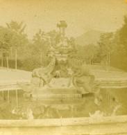 Espagne La Granja De San Ildefonso Fontaine Des Dragons Ancienne Photo Stereo 1888 - Fotos Estereoscópicas
