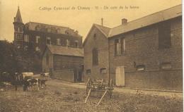 Collège Episcopal De CHIMAY - 10 - Un Coin De La Ferme - Chimay