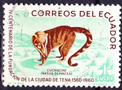 Ecuador - Berg-Nasenbär (Nasuella Olivacea)  (MiNr. 1069) 1961 - Gest. Used Obl. - Equateur