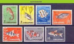 Mwe2402 FAUNA VISSEN FISH FISCHE POISSONS MARINE LIFE SINGAPORE 1962-1967 ONG/MH - Vissen