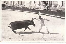 CARTE-PHOTO ARLES (13) RASETTEUR (PHOTO GEORGE à ARLES) - Arles