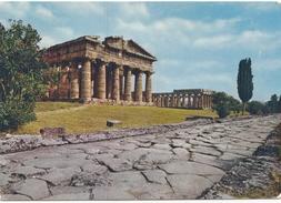 PAESTUM, Tempio Di Nettuno E La Basilica, Used Postcard [19618] - Salerno