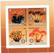 ERYTREE -  Champignons - Erythrée