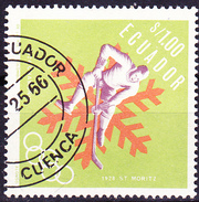 Ecuador - Olympiade Grenoble Eishockey (MiNr. 1275) 1966 - Gest. Used Obl. - Equateur