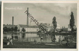 Siegendorf - Burgenland - Foto-Ansichtskarte - Österreich
