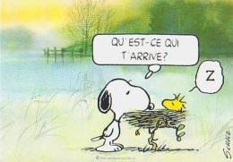 Illustrateur Humour        H141      Qu'est Ce Qui T'arrive ?  Z ( Schulz ) - Illustrators & Photographers
