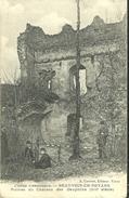 Beauvoir En Royans Ruines Du Chateau Des Dauphins - France