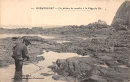 29 - FINISTERE / Douarnenez - Un Pêcheur De Crevettes à La Plage Du Riz - Beau Cliché Animé - Douarnenez