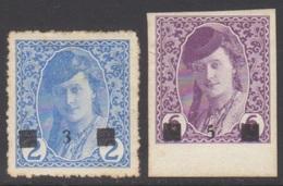 YOUGOSLAVIE 1919 2 TP Pour Journaux De Bosnie N° 110 à 111 Y&T Neuf * Charnière - 1919-1929 Königreich Der Serben, Kroaten & Slowenen
