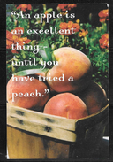 South Carolina, Johnston Peach Museum, Unused - United States