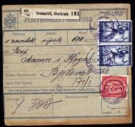 A4538) Slovenia Austria Yugoslavia Wertpaketkarte Neumarktl 13.5.19 MiF Mixed Franking - 1918-1945 1. Republik