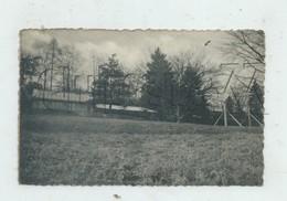 Mont-de-l'Enclus (Belgique, Hainaut) : Le Centre Méthodistes Réfectoire Et Dortoir à Amougies Env 1949 PF. - Mont-de-l'Enclus