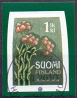 Finland 2010 Kattenvoet GB-USED - Oblitérés