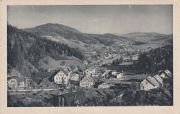 Jizerske Hory /Isergebirge/ ... Smrzovka /Morchenstern/ - Tchéquie