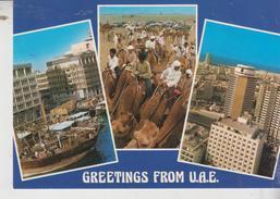 Emirati Arabi Uniti  U.A.E. Greetings View No Stamp   No Vg - Emirati Arabi Uniti