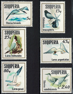 Albania 1973 _ Seabirds - Full Set MNH** - Albania