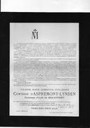 D'Aspremont-Lynden Comtes De Beauffort °1849 Liège +1917 Linden Lubbeek Meeus De Dieudonné De Corbeek-over-Lo T'Serclaes - Obituary Notices