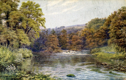 AR QUINTON - SALMON 1476 - MEETING OF THE WATERS, BOLTON WOODS - Quinton, AR