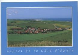 Aspect De La Côte D'Opale : Le Site Des Deux Caps (Pas De Calais) Ed Floriscope - Autres Communes