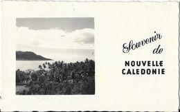 Souvenir De Nouvelle Calédonie - Mini Carte Postale (7 X 11 Cm) - Nuova Caledonia