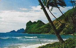 Nouvelle Calédonie - Environs De Hienghène - Le Sphinx (Côte Est), Les Vagues Au Pied Des Cocotiers - Nuova Caledonia