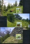 Liechtenstein 2015 Fauna, Reptiles, Snakes, Lizards Maxi Cards - Snakes