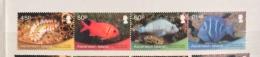 Ascension 2013  FISH STRIP SET  MNH - Fishes