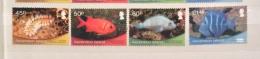 Ascension 2013  FISH  SET  MNH - Fishes