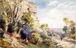TUCKS OILETTE - HENRY WIMBUSH - 7586 - THE UNDERCLIFF, VENTNOR - Ventnor