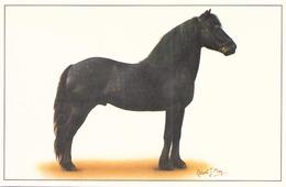 CHEVAL NOIR - Pferde
