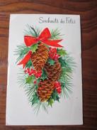 Carte Postale  -  SOUHAITS DES FÊTES  -  écrite - Auguri - Feste